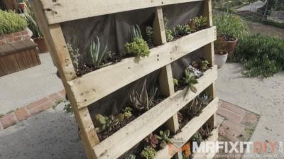DIY pallet garden