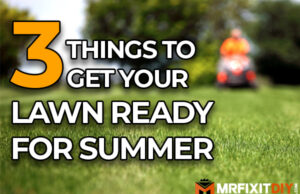 3 things to get your lawn ready for summer